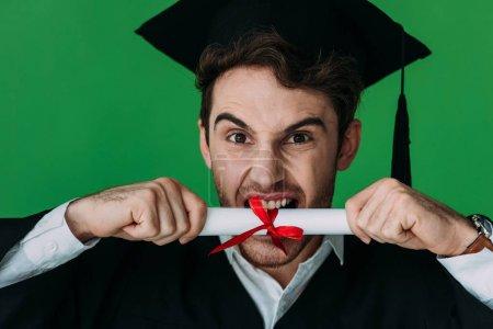 Photo pour Vue avant de l'étudiant fâché dans le diplôme mordant de chapeau académique avec le ruban rouge isolé sur le vert - image libre de droit
