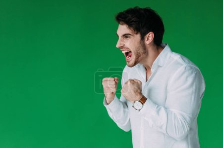 Photo for Angry man in white shirt holding fists up and screaming isolated on green - Royalty Free Image