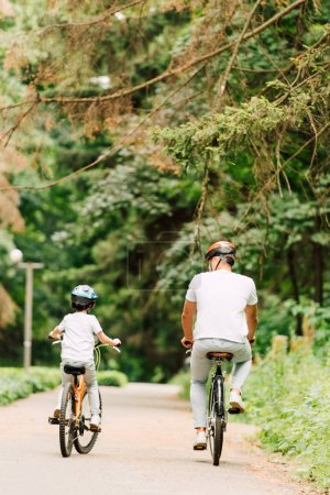 Photo for Back view of father and son riding bicycles on road around forest - Royalty Free Image