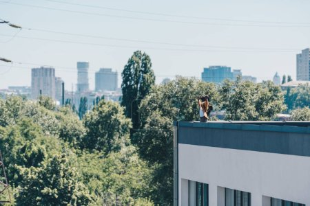 Photo for African american man gesturing with raised hands while standing on rooftop with green trees and blue sky on background - Royalty Free Image