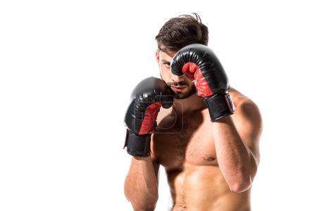 Photo pour Boxer musculaire dans des gants de boxe d'isolement sur le blanc - image libre de droit