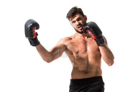 Photo pour Barbu musculaire Boxer boxe isolée sur le blanc - image libre de droit