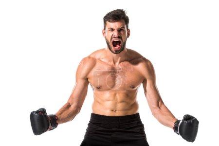 Photo pour Boxer torse nu en colère dans les gants de boxe criant isolé sur le blanc - image libre de droit