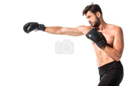 Photo pour Vue latérale de boxer torse nu boxe isolée sur le blanc - image libre de droit