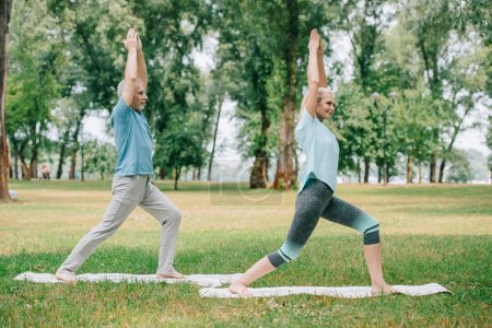 Photo pour Mature man and woman standing on yoga mats in warrior poses while practicing yoga in park - image libre de droit