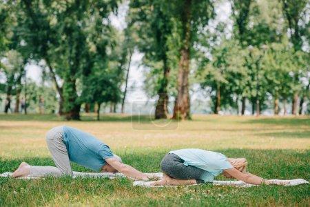 Photo pour L'homme et la femme mûrs pratiquant le yoga de relaxation posent sur des tapis de yoga sur la pelouse - image libre de droit