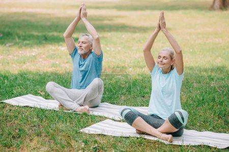 Photo pour Mature homme et femme assis dans des poses de lotus et méditant dans le parc - image libre de droit