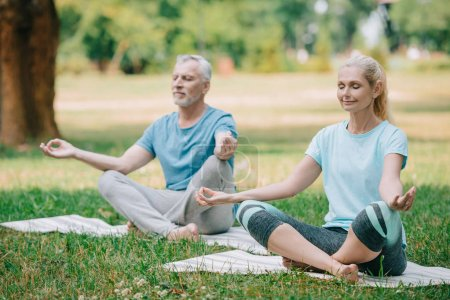 Photo for Mature man and woman meditating in lotus poses while sitting on yoga mats - Royalty Free Image