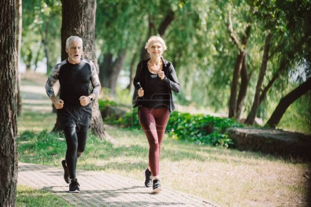 Photo for Mature, smiling joggers running together on pavement in sunny park - Royalty Free Image