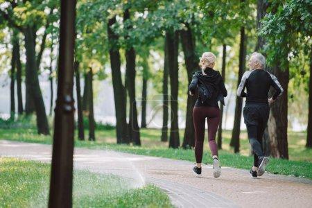 Photo pour Vue arrière des coureurs mûrs et sportifs faisant courir ensemble dans le stationnement - image libre de droit