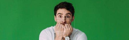 Photo pour Plan panoramique de jeune homme effrayé mordant les doigts isolés sur vert - image libre de droit
