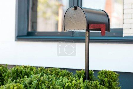 Photo pour Boîte aux lettres en métal noir près des buissons verts avant la maison - image libre de droit