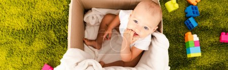 Photo for Panoramic shot of funny little child sitting in cardboard box and taking hand into mouth - Royalty Free Image