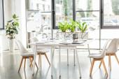 """Постер, картина, фотообои """"интерьер офиса со столом, стульями, зелеными растениями и цифровыми устройствами"""""""