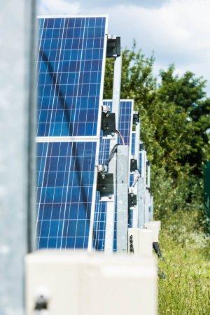 Photo pour Mise au point sélective des batteries bleues d'énergie solaire et des arbres verts - image libre de droit