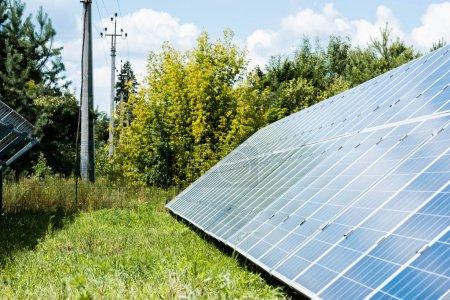 Foto de Baterías de energía solar azul con espacio de copia y árboles verdes - Imagen libre de derechos