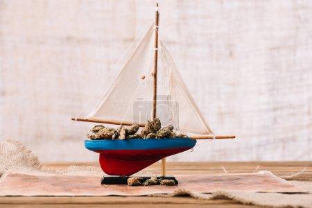 Photo pour Navire décoratif avec des morceaux secs de plante sur la surface en bois - image libre de droit