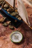 """Постер, картина, фотообои """"верхний вид корабля с растительными комками возле компаса на карте мира"""""""