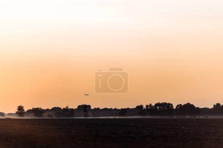 Photo pour Champ de blé près des arbres et du ciel orange le soir - image libre de droit