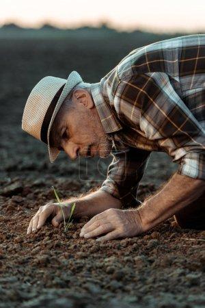 Foto de Enfoque selectivo de agricultor escindero que mira a una pequeña planta en tierra - Imagen libre de derechos