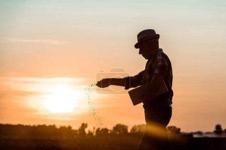 Photo pour Profil de l'agriculteur âgé en chapeau de paille semant des graines pendant le coucher du soleil - image libre de droit