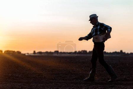Photo pour Profil de fermier dans la marche de chapeau de paille et semer des graines - image libre de droit