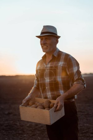 Photo pour Heureux fermier indépendant retenant la boîte avec des pommes de terre biologiques - image libre de droit