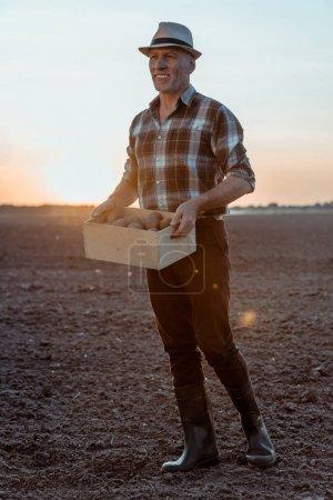 Photo pour Joyeux fermier indépendant retenant la boîte avec des pommes de terre organiques - image libre de droit