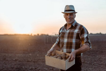 cheerful self-employed farmer holding box with organic potatoes