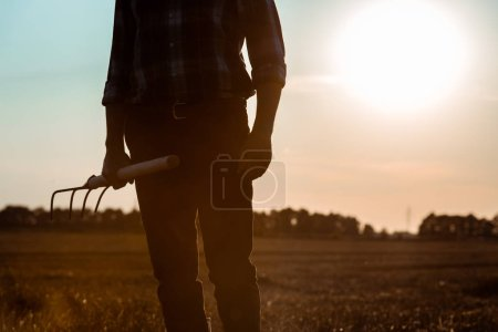 Photo for Cropped view of self-employed man holding rake in wheat field - Royalty Free Image