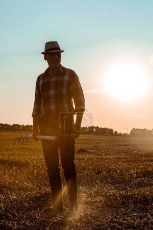 beau travailleur indépendant exploitation râteau dans le champ de blé