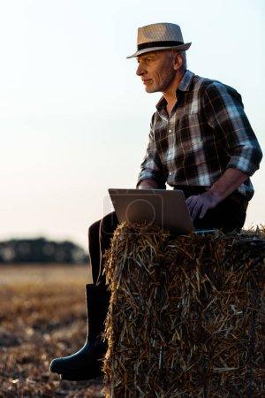 Photo for Self-employed senior man sitting on bale of hay and using laptop - Royalty Free Image