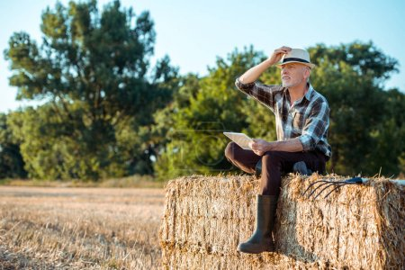 Photo for Senior farmer using digital tablet while sitting on bale of hay - Royalty Free Image