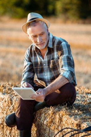 senior farmer holding digital tablet while sitting on bale of hay