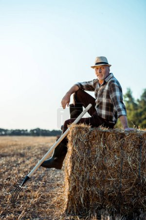 Photo for Cheerful bearded farmer in straw hat sitting on bale of hay - Royalty Free Image