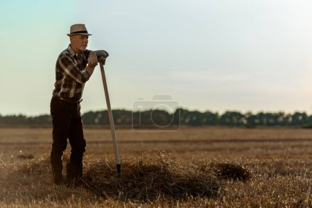 Photo for Handsome self-employed man in straw hat holding rake in wheat field - Royalty Free Image
