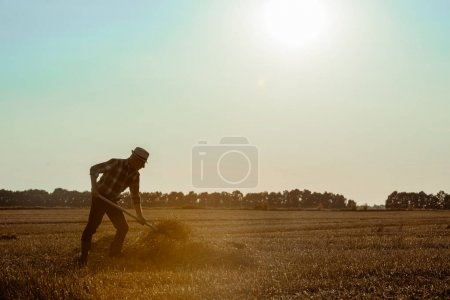 Photo for Profile of self-employed  man in straw hat holding rake with hay in wheat field - Royalty Free Image