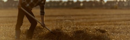Photo for Panoramic shot of self-employed man holding rake with hay in wheat field - Royalty Free Image