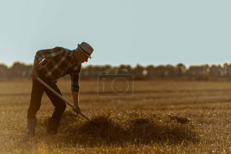 Photo for Profile of senior man in straw hat holding rake with hay in wheat field - Royalty Free Image