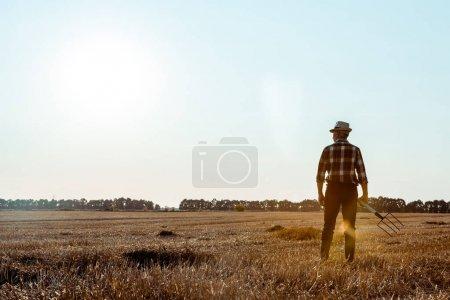 Foto de Vista posterior del hombre mayor que sostiene rastrillo en el campo de trigo - Imagen libre de derechos
