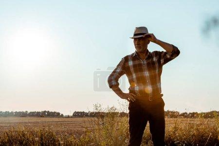 senior homme touchant chapeau de paille dans le champ de blé