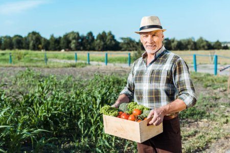 happy farmer holding box with vegetables near corn field