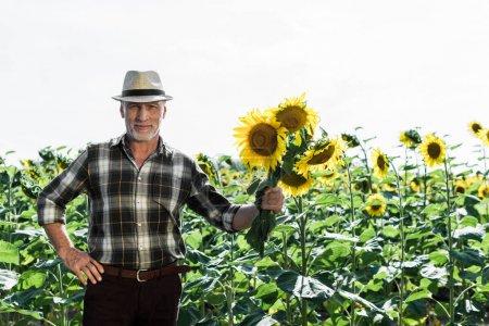 glücklicher Bauer, der mit der Hand auf der Hüfte steht und Sonnenblumen in der Nähe des Feldes hält