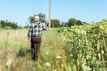 Photo for Back view self-employed man holding rack near green field - Royalty Free Image