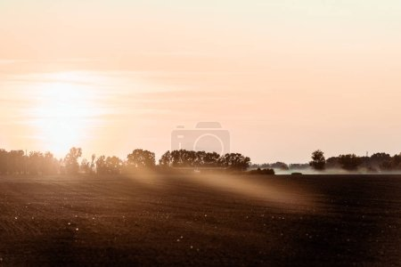Photo for Sunlight on field near trees and sky in evening - Royalty Free Image