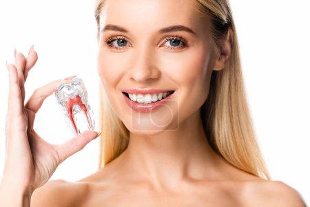Photo pour Femme de sourire nue avec le modèle blanc de dent de fixation de dents d'isolement sur le blanc - image libre de droit
