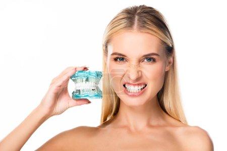 Photo pour Femme nue affichant des dents et retenant le modèle de mâchoire d'isolement sur le blanc - image libre de droit