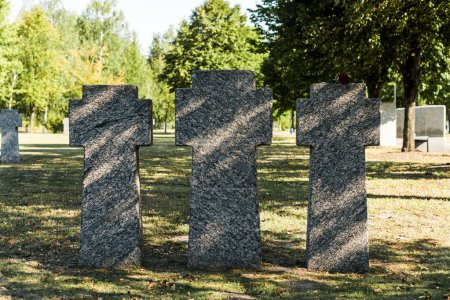 Photo for Shadows on concrete tombs in cemetery near trees - Royalty Free Image