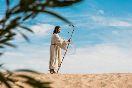 Photo pour Foyer sélectif de l'homme tenant la canne en bois dans le désert - image libre de droit