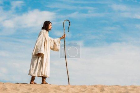 Photo pour Bebeau homme barbu retenant la canne en bois et marchant dans le désert - image libre de droit